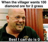 Anaconda, Best, and Diamond: When the villager wants 100  diamond ore for 2 grass  Best I can do is 0 MinCeAFt SCamMEr