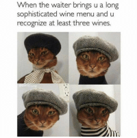 I studied wine tasting in Florence, okay?: When the waiter brings u a long  sophisticated wine menu and u  recognize at least three wines. I studied wine tasting in Florence, okay?