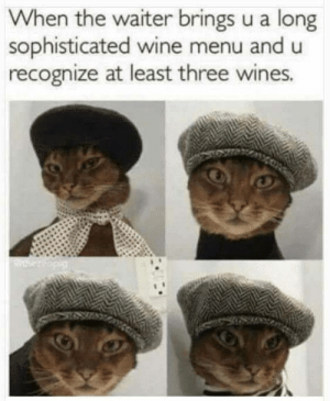 wines: When the waiter brings u a long  sophisticated wine menu and u  recognize at least three wines