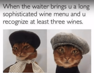 Lol, Memes, and Wine: When the waiter brings u a long  sophisticated wine menu and u  recognize at least three wines. nice hat lol via /r/memes https://ift.tt/2LBIjU0
