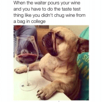College, Lmao, and Memes: When the waiter pours your wine  and you have to do the taste test  thing like you didn't chug wine from  a bag in college In college!? Lmao... to this day.