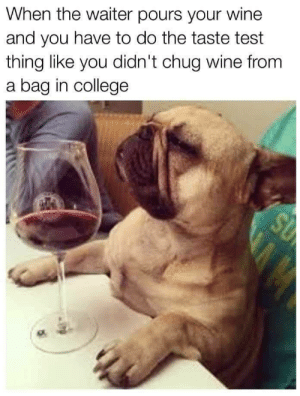 Wine tasting by Holofan4life FOLLOW 4 MORE MEMES.: When the waiter pours your wine  and you have to do the taste test  thing like you didn't chug wine from  a bag in college  SU Wine tasting by Holofan4life FOLLOW 4 MORE MEMES.