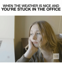 LET ME OUT 😫 (featuring @kelley_lord) elitedailyvideo: WHEN THE WEATHER IS NICE AND  YOU'RE STUCK IN THE OFFICE  ELITE LET ME OUT 😫 (featuring @kelley_lord) elitedailyvideo