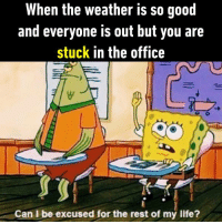 9gag, Dank, and Funny: When the weather is so goot  and everyone is out but you are  stuck in the office  Can L be excused for the rest of my life? Get me out of here!  https://9gag.com/gag/aq157r7/sc/funny?ref=fbsc