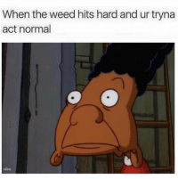 Funny, Weed, and Act: When the weed hits hard and ur tryna  act normal  nicu It's hard 😒