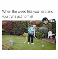 Just vacuuming the grass, you know how we do 💁🏻: When the weed hits you hard and  you tryna act normal  COMEDY Just vacuuming the grass, you know how we do 💁🏻