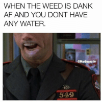 Can you relate?: WHEN THE WEED IS DANK  AF AND YOU DONT HAVE  ANY WATER.  @Marijuana.tv  549 Can you relate?
