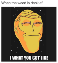 Dank Af: When the weed is dank af  IWHAT YOU GOT LIKE