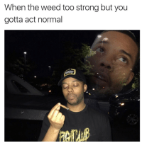 If you know you know.. 😂💯 https://t.co/uqt3xUvWPZ: When the weed too strong but you  gotta act normal If you know you know.. 😂💯 https://t.co/uqt3xUvWPZ