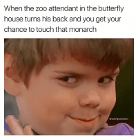 Memes, Butterfly, and House: When the zoo attendant in the butterfly  house turns his back and you get your  chance to touch that monarch  comfy sweaters You really thought I wasnt gonna cop a feel ?!