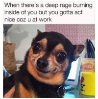 Me Af right now. 😭: When there's a deep rage burning  inside of you but you gotta act  nice coz u at work Me Af right now. 😭