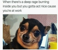 Work, Nice, and Rage: When there's a deep rage burning  inside you but you gotta act nice cause  you're at work