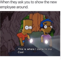 First day at work be like...😩😂💯 WSHH: When they ask you to show the new  employee around  Ohumor me_pink  LA  -This is where I come to cry  -Cool. First day at work be like...😩😂💯 WSHH