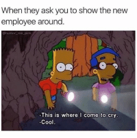 SarcasmOnly: When they ask you to show the new  employee around  Chumor_me pink  This is where l come to cry.  Cool SarcasmOnly
