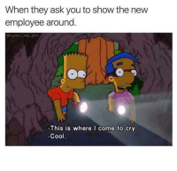 Cool, Pink, and MeIRL: When they ask you to show the new  employee around.  Chumor-me_pink  ge  This is where I come to cry  Cool. Meirl