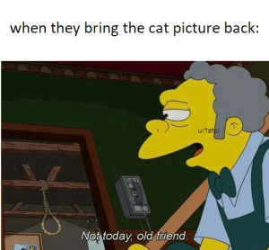 THEY BROUGHT IT BACK! HOORAY! by Tdfpl MORE MEMES: when they bring the cat picture back:  u/Tdfpl  Not todav old friend THEY BROUGHT IT BACK! HOORAY! by Tdfpl MORE MEMES