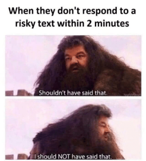meirl by 9w_lf9 MORE MEMES: When they don't respond to a  risky text within 2 minutes  Shouldn't have said that.  Ishould NOT have said that. meirl by 9w_lf9 MORE MEMES