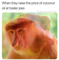 "Rude, Tumblr, and Blog: When they raise the price of coconut  oil at trader joes  @cabbagecatmemes <p><a href=""http://memehumor.net/post/169386641907/rude"" class=""tumblr_blog"">memehumor</a>:</p>  <blockquote><p>Rude</p></blockquote>"