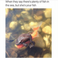 #myfish 🐠👈🏻 no touchy: When they say there's plenty of fish in  the sea, but she's your fish  aokofHoe #myfish 🐠👈🏻 no touchy