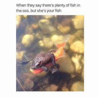 Fish, Plenty of Fish, and Girl Memes: When they say there's plenty of fish in  the sea, but she's your fish I wanna be your fish