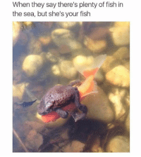 She's mine: When they say there's plenty of fish in  the sea, but she's your fish She's mine