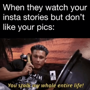 Life, Memes, and Watch: When tney watch your  insta stories but don't  like your pics:  You stalk my whole entire life! Why are you so obsessed with me? CapGenius