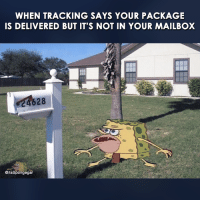 mailboxes: WHEN TRACKING SAYS YOUR PACKAGE  IS DELIVERED BUT IT'S NOT IN YOUR MAILBOX  CitsSpongegar