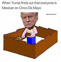D-D-D-Deported: When Trump finds out that everyone is  Mexican on Cinco De Mayo  @whitepeoplehumor D-D-D-Deported