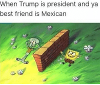 Best Friend, Memes, and Best: When Trump is president and ya  best friend is Mexican Que onda compa q dice el otro lado??😂😂