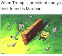 Best Friend, Blackpeopletwitter, and Friends: When Trump is president and ya  best friend is Mexican  そ  of  ·と  PLAY <p>F is for friends who do stuff together (via /r/BlackPeopleTwitter)</p>