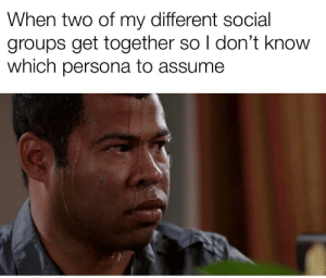 MeIRL, Persona, and Social: When two of my different social  groups get together so I don't know  which persona to assume Meirl