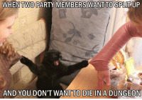 Party, DnD, and Law: WHEN TWO  PARTY MEMBERS WANT TO SPLITUP  AND YOU DON'T WANT TO DIE INA DUNGEON DON'T SPLIT THE PURRRTY  #dndcaturday #dontsplittheparty  -Law