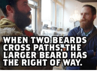 Beard: WHEN TWOBEARDS  CROSS PATHS,THE  LARGER BEARD HAS  THE RIGHT OF WAY