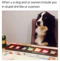 Who's a clever boy 😁 Rp @beentheretho goodgirlwithbadthoughts 💅🏼: When u a dog and ur owners include you  in stupid shit like ur a person  @beentheretho Who's a clever boy 😁 Rp @beentheretho goodgirlwithbadthoughts 💅🏼