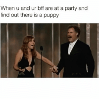 Memes, Party, and Puppy: When u and ur bff are at a party and  find out there is a puppy Where's the puppy! 😂