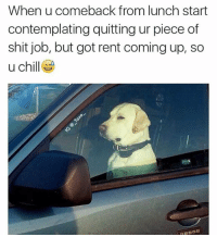 Memes, Struggle, and California: When u comeback from lunch start  contemplating quitting ur piece of  shit job, but got rent coming up, so  u chill Two more days of the struggle 😩😂 @_taxo_ go follow for more funny posts @_taxo_ . . . . workflow boybye womenlove この同じ空のもと僕らはigでつながっている smilegirl sweetpsych0 followme jokesonyou pettypost workflow california texas nyc girlproblems imalwaystired nochill girlbye pettypost sorrynotsorry zerofucksgiven thisisnolife fixitjesus ilovedogs dogsarelife
