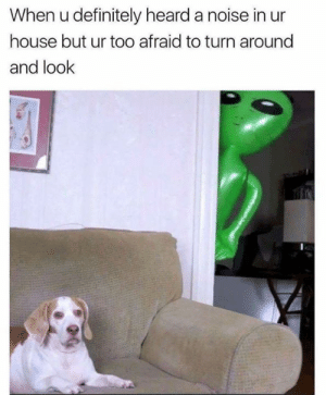 Dank, Definitely, and House: When u definitely heard a noise in ur  house but ur too afraid to turn around  and look It can't see you if you ignore it.
