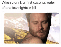 Jail, Water, and Coconut Water: When u drink ur first coconut water  after a few nights in jail  @cabbagecatmemes Back on track 💅🏻 @john_trulli