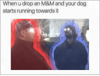 Running, Dog, and M&m: When u drop an M&M and your dog  starts running towards it https://t.co/31AscPsKrR