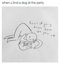 Party, Humans of Tumblr, and Eve: when u find a dog at the party  how's it go  ,n  down eve  art