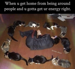 Energy, Memes, and Home: When u get home from being around  people and u gotta get ur energy right.  er shan