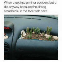Cactie: When u get into a minor accident but u  die anyway because the airbag  smashed u in the face with cacti  ank Sinatra  22 195U