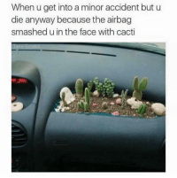 Cactie: When u get into a minor accident but u  die anyway because the airbag  smashed u in the face with cacti  Tank Sinatra