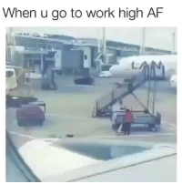 Af, Memes, and Work: When u go to work high AF  142 @kush.puffs