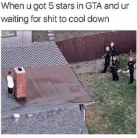 GANGSTA 😂😂 @funnyblack.s ➡️ TAG 5 FRIENDS ➡️ TURN ON POST NOTIFICATIONS: When u got 5 stars in GTA and ur  waiting for shit to cool down GANGSTA 😂😂 @funnyblack.s ➡️ TAG 5 FRIENDS ➡️ TURN ON POST NOTIFICATIONS
