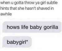 Life, Tumblr, and Blog: when u gotta throw ya girl subtle  hints that she hasn't shaved in  awhile  hows life baby gorilla  babygirl epicjohndoe:  Hairy Situation