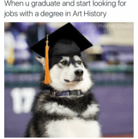 Funny, Meme, and Memes: When u graduate and start looking for  jobs with a degree in Art History  meme Cloud good luck @doggosdoingthings