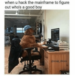 mainframe: when u hack the mainframe to figure  out who's a good boy  @soap shoes