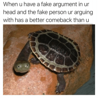Desperate, Fake, and Head: When u have a fake argument in ur  head and the fake person ur arguing  with has a better comeback than u  @cabbagecatmemes Alexa play desperate hosuewives