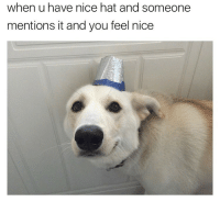 LOL at not checking the internet for hours for memes like this (twitter: cerealandforks): when u have nice hat and someone  mentions it and you feel nice LOL at not checking the internet for hours for memes like this (twitter: cerealandforks)